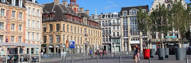 Luxury real estate le vieux Lille