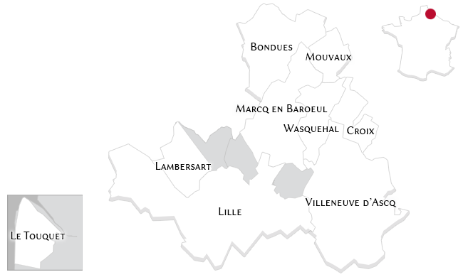 Luxury properties in Lille